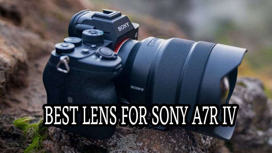 Best Lens For Sony A7R IV Camera